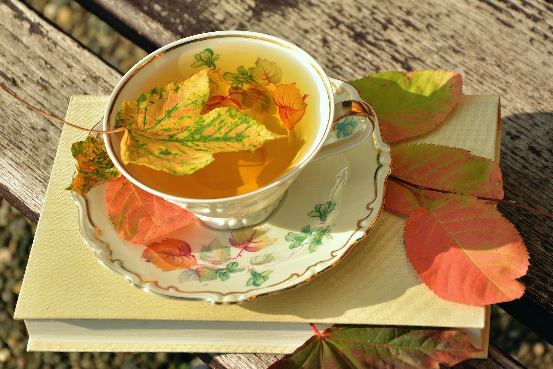 Teetasse mit herbstlichen Blättern auf einem Buch